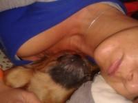 Panni aludna,Gömbike pisilni menne :)Hadjál még aludni kérlek :)