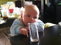 Hol a reggeli tejem?!