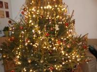 Jaj, de szép a karácsonyfa?????????