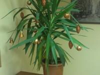 Céges különleges karácsonyfa