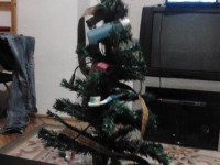 Költségcsökkentéses Karácsony.