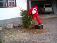 Mikulás be cserkészi a karácsony fát :D