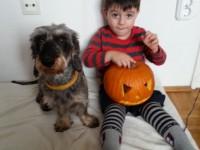 Sonny & Iker Halloween 2015