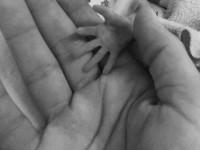 Apa és fia - kéz a kézben az inkubátorban