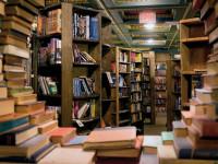 Anna egy könyvet vitt vissza az egyik nagy könyvesboltba