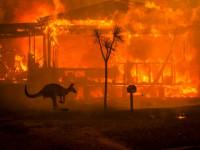 Lángokban Ausztrália