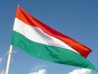 Kötelező lesz január 15-től zászlót szúrni a sertéshúsba a nagyobb boltok húspultjaiban.