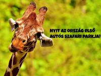Ma nyit meg Magyarország első autós szafari parkja.